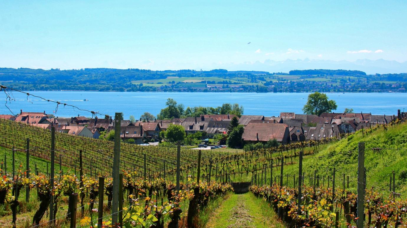 Schweiz Fribourger Land §-Seen-Land