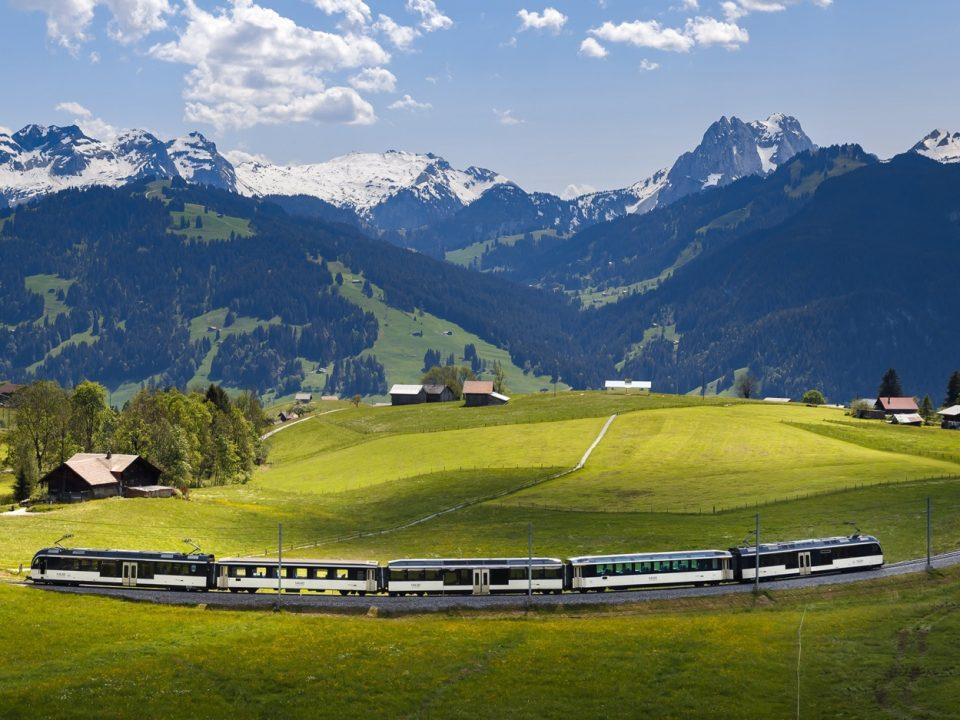 Golden Panoramic Express MOB